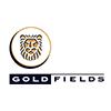 Gold Fields